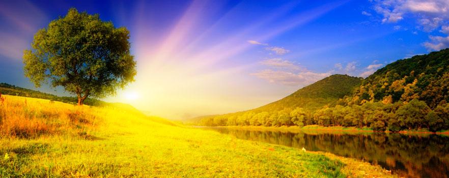 Persevere Em Oração Que Deus Irá Cumprir: Dê Um Passo Rumo à Felicidade Plena!